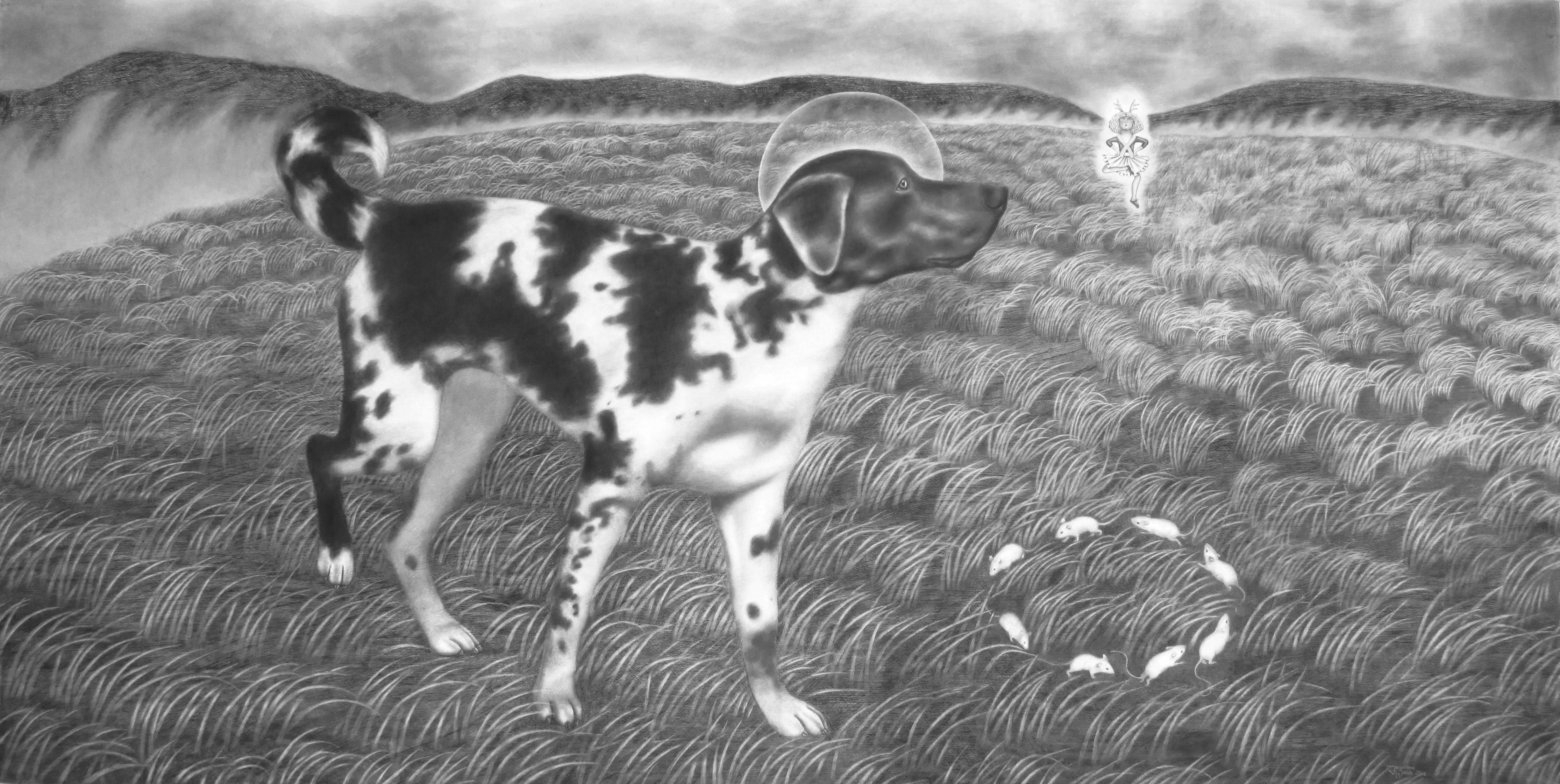 2014 The Scent of Change - Cancer Detection (New Work of Dogs series) - charcoal on gessoed paper - 2014